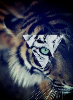 Imagine Iluminati. jpg