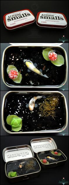 If you like these ponds, make sure to watch for my eBay posting for one next Monday! Large Altoids tin that will include two koi fish, a frog, turtle, plants, and rocks. :)