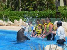 Grand Bahia Principe Coba (Riviera Maya/Akumal, Mexico) - Resort (All-Inclusive) Reviews - TripAdvisor