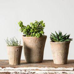 Fynn Rose Pot | Chip & Joanna Gaines | Magnolia Market | Gardening | Waco, TX