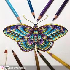 #Repost from @colourwithclaire. #wonderfulcoloring #ivyandtheinkybutterfly #johannabasford #inkyivy Loved colouring the Inky Butterfly from Johanna's new book with my Polychromos pencils