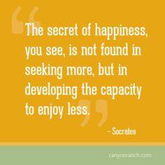 The secret of happiness, you see, is not found in seeking more, but in developing the capacity to enjoy less.  – Socrates