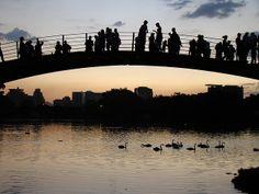 Ibirapuera Park. © daxfdr under Craetive commons Licence 2.0 (Flickr)