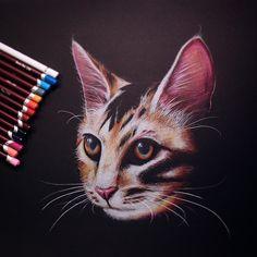 derwent coloursoft art draw on Instagram