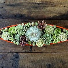 Succulent Centerpiece - Follow our easy DIY tutorial for a stunning tabletop creation