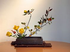 The Nordic Lotus Ikebana Blog: October 2013
