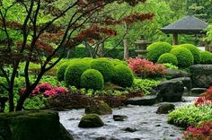 malebné zahrady japnisch Zen Asian keře jezero