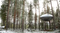 """""""The UFO"""" room at the Treehotel in Sweden"""