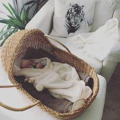 baby wicker basket