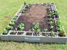 Raised bed for vegetable garden. I would need A LOT of cinder blocks for my gard. Raised bed for v Garden Landscaping, Outdoor Gardens, Garden Wall, Patio Garden, Raised Beds, Plants, Backyard Garden, Raised Garden, Backyard