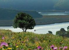 View of the Mira river from the farmhouse cottages. http://www.hideawayportugal.com/modules/property/listing-1095.htm