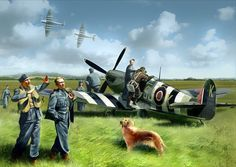 IX with Pilots of the RAF and Staff of Earth. Ww2 Spitfire, Supermarine Spitfire, Fighter Aircraft, Fighter Jets, The Spitfires, War Thunder, Afghanistan War, Ww2 Planes, Battle Of Britain