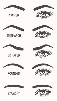 A visual guide to eyebrow shapes