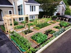 garden ideas:Backyard Designs Growing Vegetables In Florida Florida Landscape Gardening For Dummies Deck Ideas Flagstone florida gardening ideas #flowergardenplanningideas