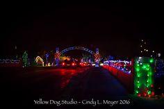 Irvine Park & Zoo Christmas Village   Photo by Yellow Dog Studio 2016