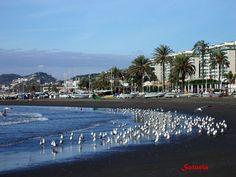 Beaches of El Palo, Malaga. Costa del Sol, Andalusia, Spain