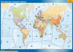 Fao fishing area