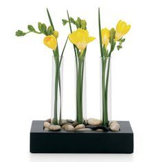 test tube vases diy - Google Search