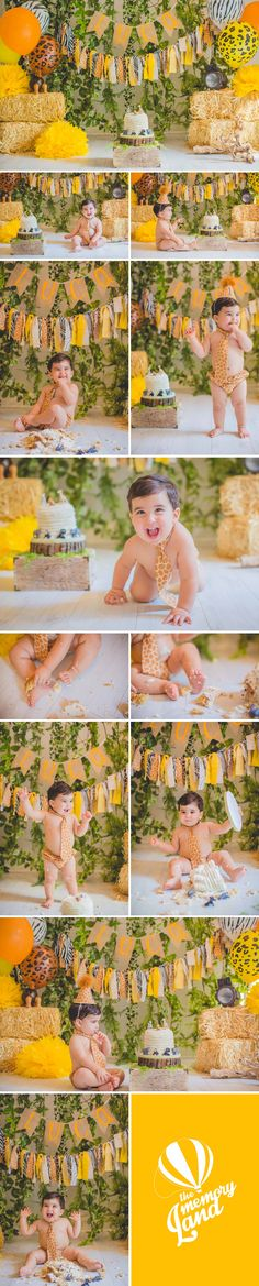Safari. Cake Time. Little Boy. Miami Photography. Child Photography. Smash the cake photography Check out more of our work :)