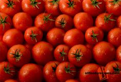 Tomatoes - Know all the details about tomatoes; its scientific name, health benefits and nutritional values.