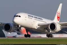 Japan Airlines - JAL JA827J Boeing 787-846 Dreamliner aircraft picture
