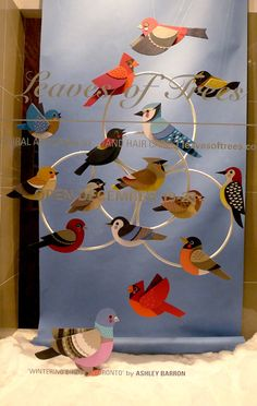 inspiration for a greeting card .... wintering birds of toronto ontario, window display