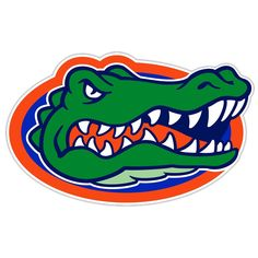 Florida Gators NCAA 12 Inch Car Magnet