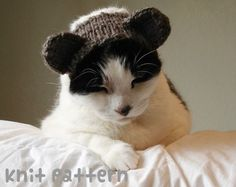 knitting pattern  teddy bear pet hat  halloween от xmoonbloom, $5.00
