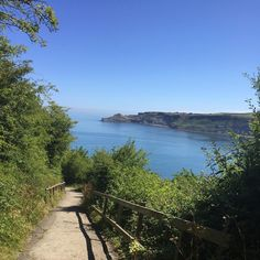 """ROSIE TAYLOR on Instagram: """"Runswick Bay🏊🏽☀️ #faveplace"""" River, Outdoor, Instagram, Outdoors, Outdoor Games, The Great Outdoors, Rivers"""