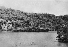 During WW II, The Dutch Ship Abraham Crijnssen evaded the prowling Japanese bombers by disguising itself as an island.