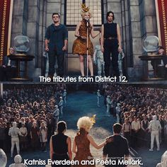"""243 Likes, 6 Comments - The Hunger Games (@mockingjaysarmy) on Instagram: """"+ [Catching Fire// 2013] I felt really bad for everyone in this scene☹️ even Effie was showing a…"""""""