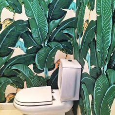 This is as much as I love this wallpaper! I even have it in my toilet! 🌴🚽🌴 Isto é o quanto eu adoro este papel de parede! Até o tenho na casa de banho social! #wallpaperfavorites #martinique #tropicalinspired #tropicalstyle