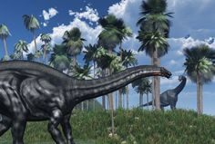 """""""Brontosaurus Was Never A Real Dinosaur."""" A couple of stupid """"scientists"""" rushed their data and destroyed fossils in order to out-do the other. Technically, Brontosaurus and Apatosaurus are the same dinosaur except that the former means thunder lizard (which sounds cooler than...), the other meaning deceptive lizard."""