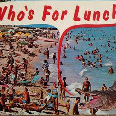 Florida Alligator Comic Postcard Whos For Lunch Vtg 1967 Unused Gator Greetings #alligator #Gatorgreetings