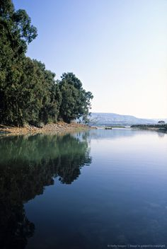 River Jordan, Galilee, Israel . . put my feet in the water . . .but didn't walk on it :)