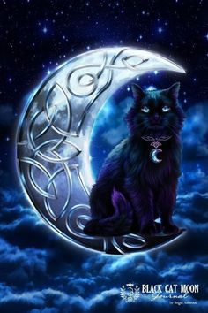 ☆ Celtic Pagan Wiccan Midnight Moon Black Cat :→: Artist Brigid Ashwood ☆ I'd use that background for a similar tattoo design Magic Cat, Witch Cat, Photo Chat, Celtic Art, Halloween Cat, Cat Drawing, Crazy Cats, Cat Art, Cats And Kittens