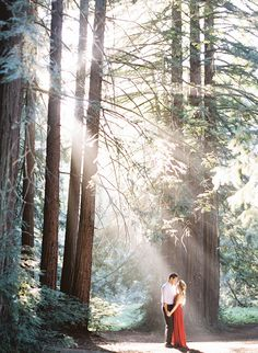Light Filled Engagement Photos in The Redwoods - Inspired By This