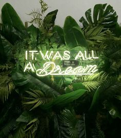 It was all a dream &; Oliver Gal It was all a dream &; Oliver Gal Zane Holt zane_holt Words Sounds Add some light […] room neon light Interior Design Gallery, Salon Interior Design, Salon Design, Oliver Gal, Home Office Rosa, Green Backgrounds, Wallpaper Backgrounds, Aesthetic Backgrounds, Watch Wallpaper