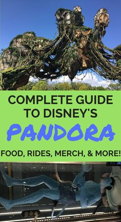 If you want to get your party on at Pandora, let Traveling Dad be your guide. Recommendations for food, rides, merchandise, and more!