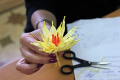 Flower made from paper cords.