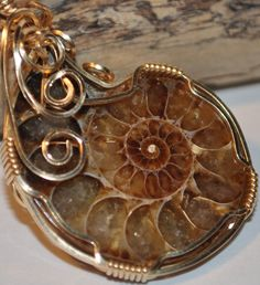 Gold wire wrap ammonite pendant necklace, 10 karat gold filled wire wrapped necklace, fossil and gold pendant, Handcrafted Gemstone Jewelry. $63.00, via Etsy.
