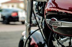#harley #harleydavidsom #sportster #biker