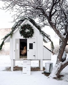 Teaming up with a few of our favorites, + to share our festive chicken coops! Cute Chicken Coops, Chicken Coup, Chicken Coop Designs, Backyard Chicken Coops, Chicken Coop Plans, Chicken Runs, Chickens Backyard, Cute Chickens, Raising Chickens