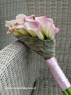 j'aime bien le collage avec Allium ursinum