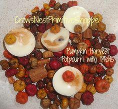 Pumpkin Harvest Potpourri my blend of pumpkin pods, rosehips, spices + 4 natural soy melting tarts ~ all scented pumpkin apple maple butter by crowsnestprimitive on Etsy