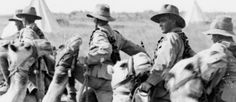 EGYPT AND PALESTINE 1914 - 1918 Australian members of the Imperial Camel Corps near Jaffa, Palestine