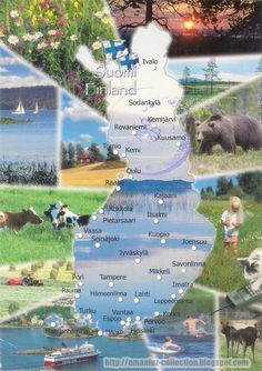1260 FINLAND - The map and the flag of the country Finland Map, Finland Travel, Finnish Language, Thinking Day, Famous Places, Helsinki, Europe, Norway, Country
