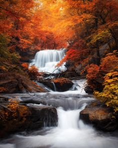 EarthPorn is your community of landscape photographers and those who appreciate the natural beauty of our home planet. Fall Pictures, Nature Pictures, Canvas Pictures, Beautiful Pictures, All Nature, Amazing Nature, Beautiful Waterfalls, Beautiful Landscapes, Autumn Photography