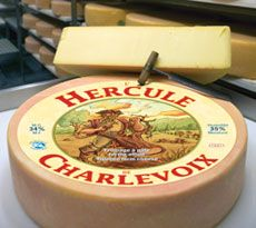 Laiterie Charlevoix - Nos Fromages - L'Hercule de Charlevoix Queso Cheese, Wine Cheese, Charlevoix Quebec, Cooking Temperatures, Milk Protein, Melted Cheese, Hercules, Cheese Recipes, Wines