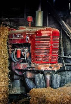 Country Red Tractor    I think it reads/say FARMALL on it. Great photo!